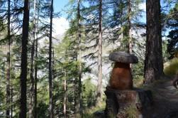 Orman içinde tahtadan mantar:)