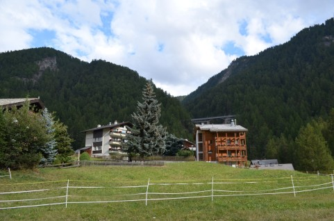 Sadece Matterhorn değil Zermatt'ı çevreleyen bütün dağlar ve ormanlar çok güzel