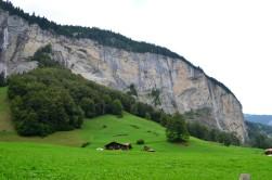 Muhteşem bir doğa ve muhteşem bir yeşil