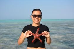 Deniz yıldızlarıyla maceramız bitmiyor:)