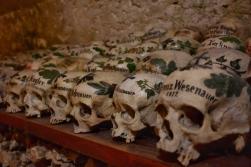 Çıkartılan kafatasları
