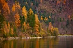 Her yer sonbahar renkleriyle bezenmiş:)