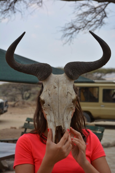 Wildebeest Birgül:)